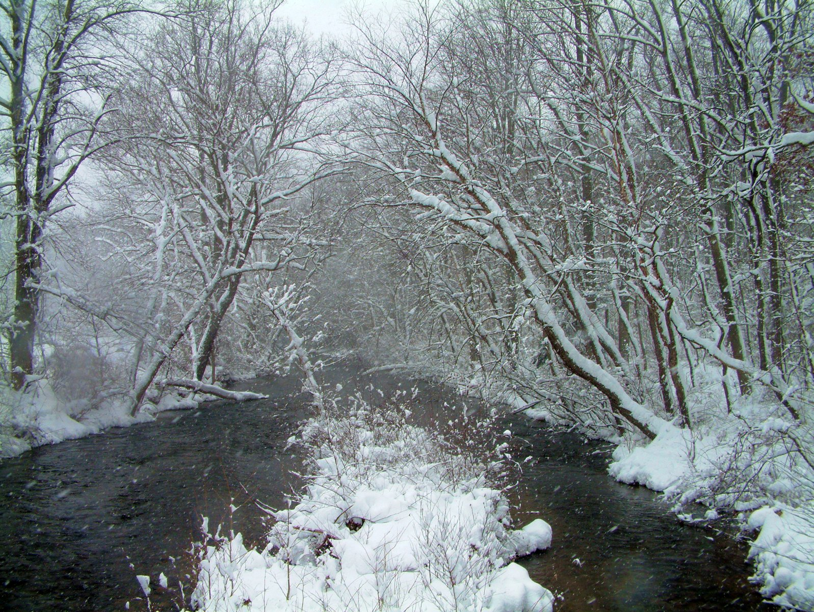Snow and Clarks Creek